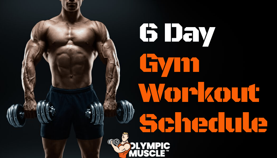 6 Day Gym Workout Schedule